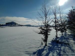 2017-01-06 13-07-00 SALMENDINGEN KORNBÜHL Schneeschuhwandern