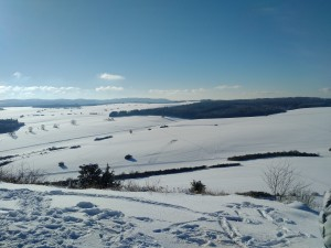 2017-01-06 14-20-11 SALMENDINGEN KORNBÜHL Schneeschuhwandern